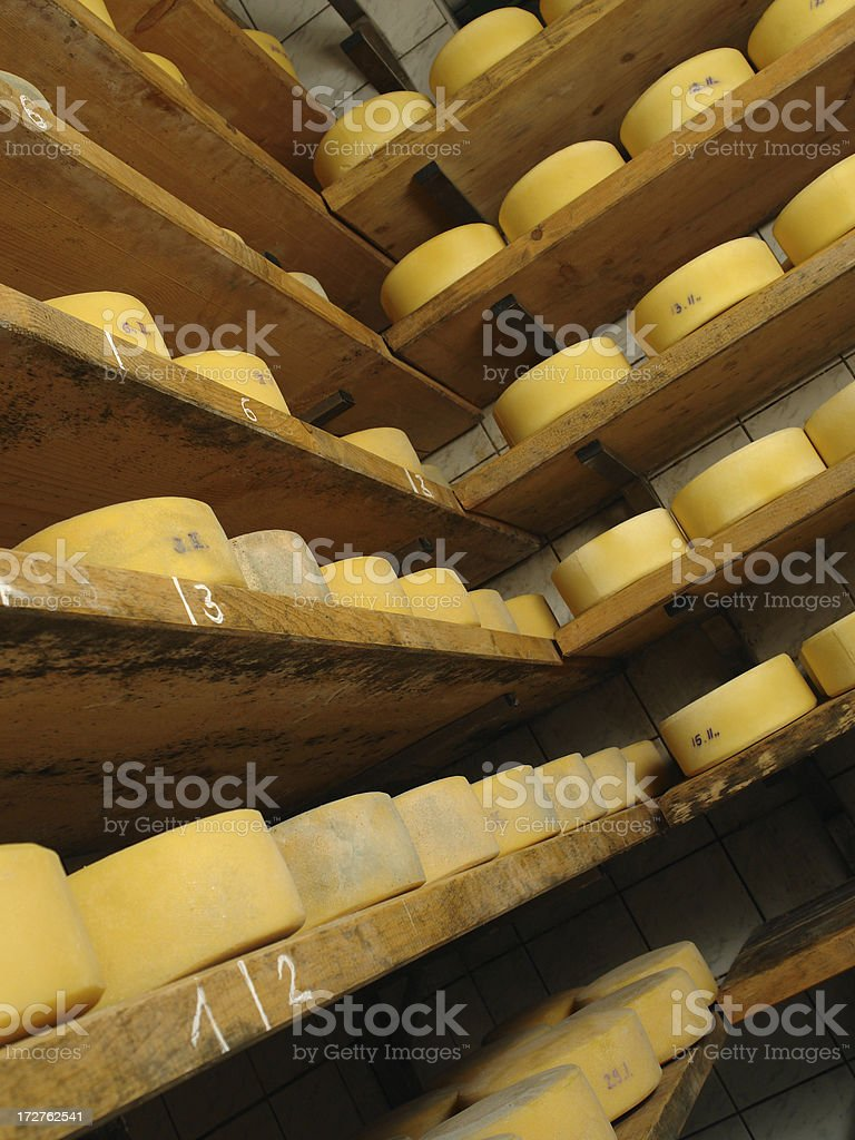 Fresh Cheese royalty-free stock photo
