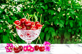 Fresh cherries in crystal bowl on a table with a white cloth and decor of flowers on a green natural background of blurred flowers. Concept of healthy food, vitamin C. Copy space for your text.
