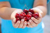 fresh cherry in the boy hands.