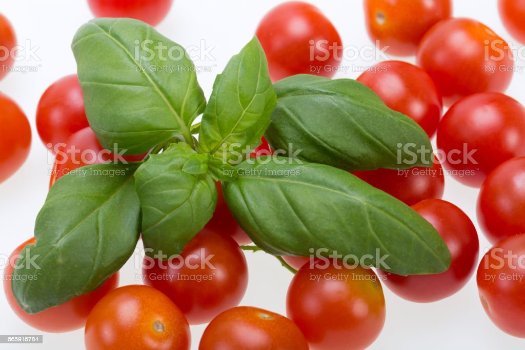 fresh cherry tomatoes with basil, on white background foto stock royalty-free