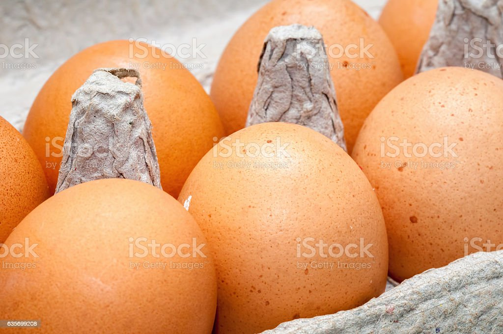 Fresh chicken eggs in carton royalty-free stock photo