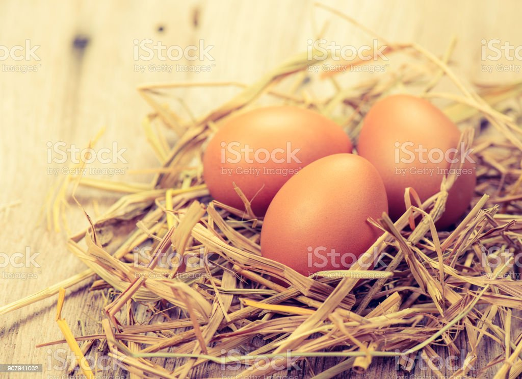 fresh chicken eggs with nest on wood table stock photo