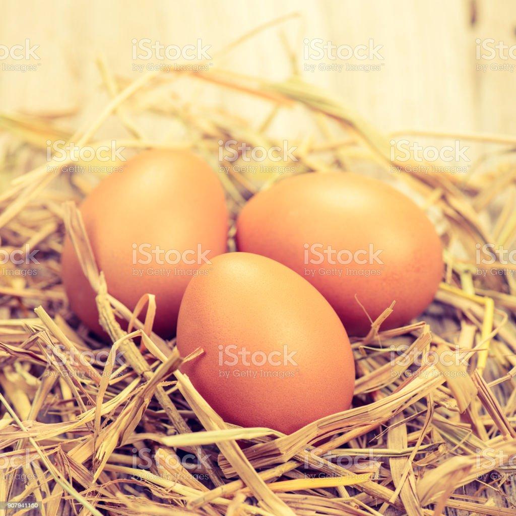 fresh chicken eggs,vintage process style stock photo