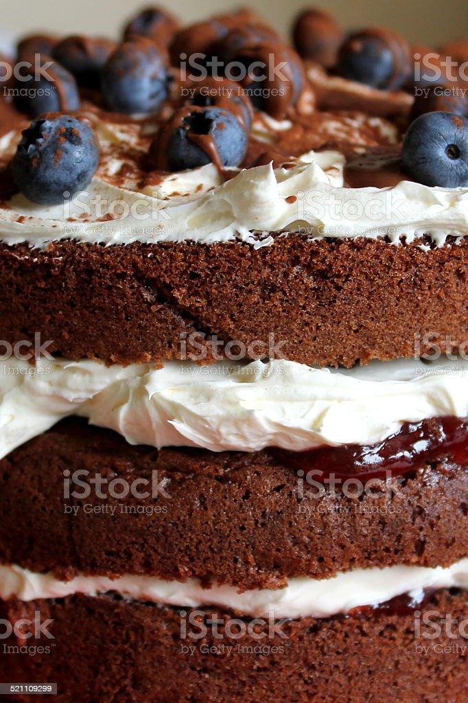 Fresh Chocolate Cake with Blueberries, grated chocolate, cream and sauce stock photo