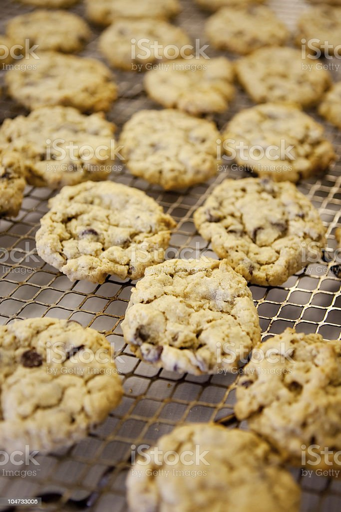 Fresh Chocolate Chip Cookies royalty-free stock photo
