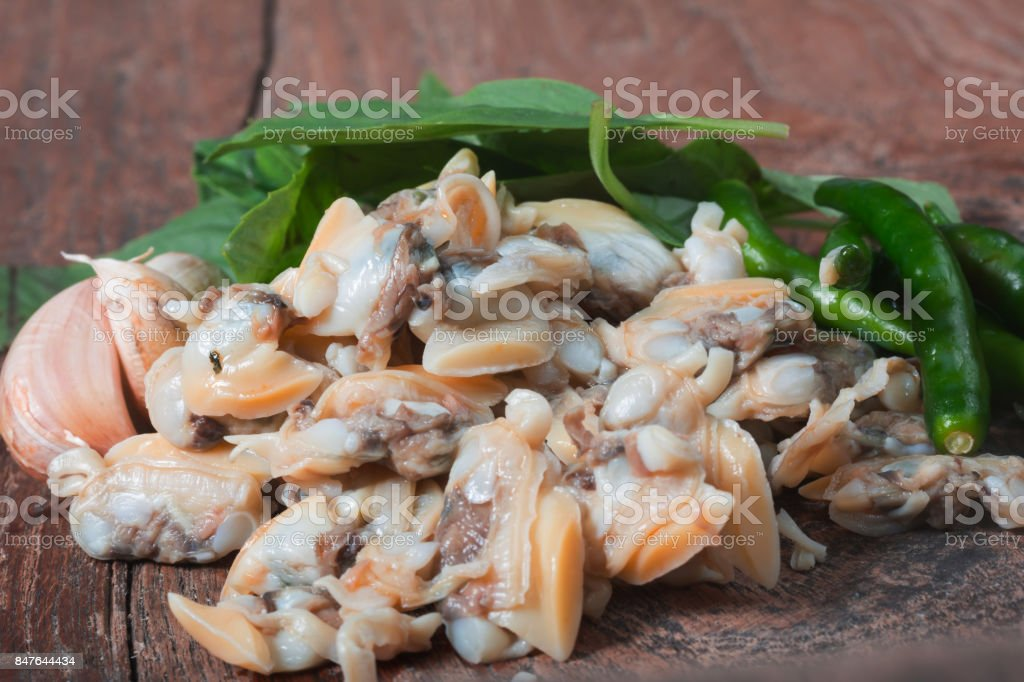 Fresh cockle From the sea of Thailand and Basil Leaves stock photo