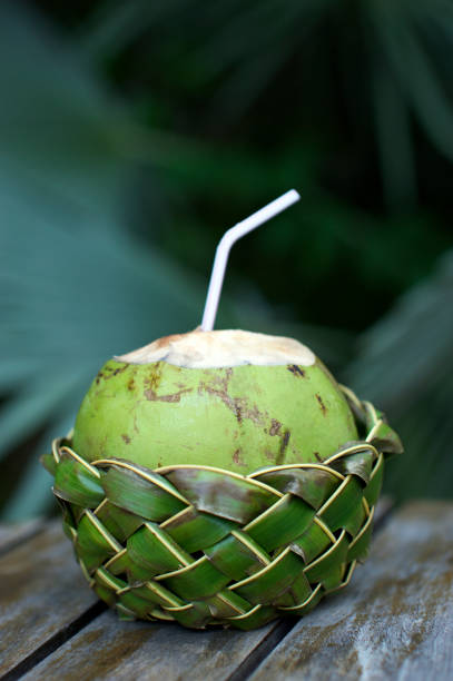 Fresh Coco Gelado Drinking Coconut in Woven Basket Fresh Brazilian coco gelado drinking coconut in woven palm basket rests on weathered wooden table against green jungle background gelado stock pictures, royalty-free photos & images