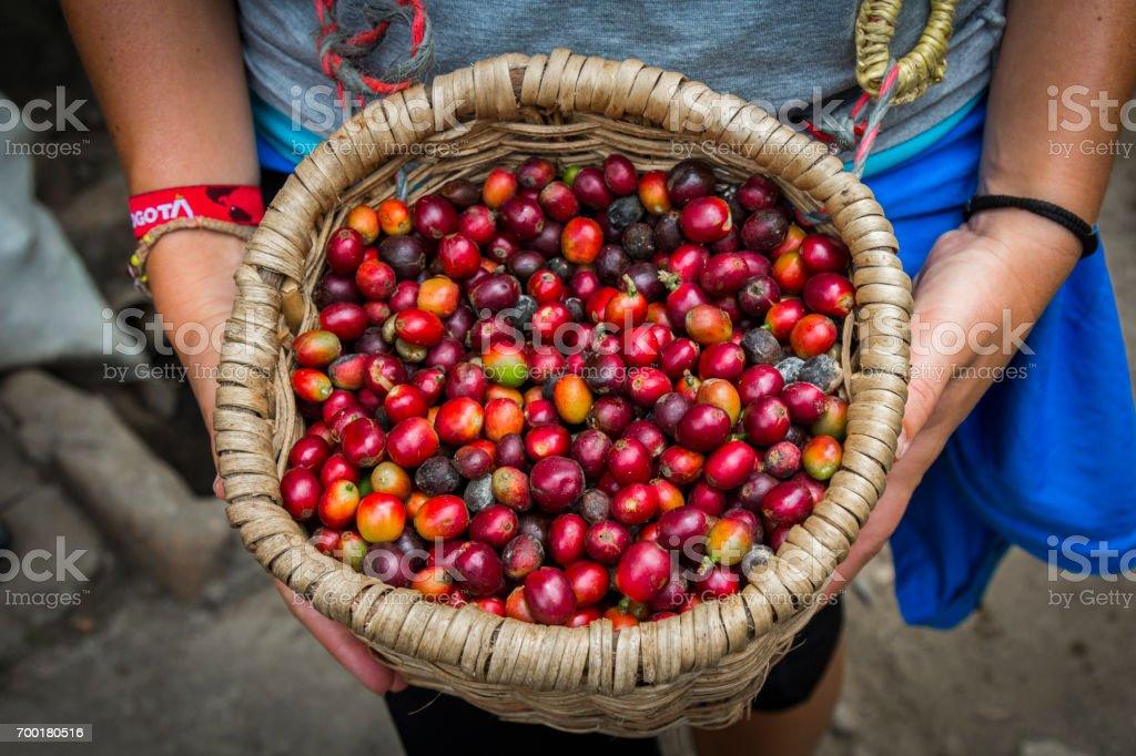 Fresh coffee on a basket