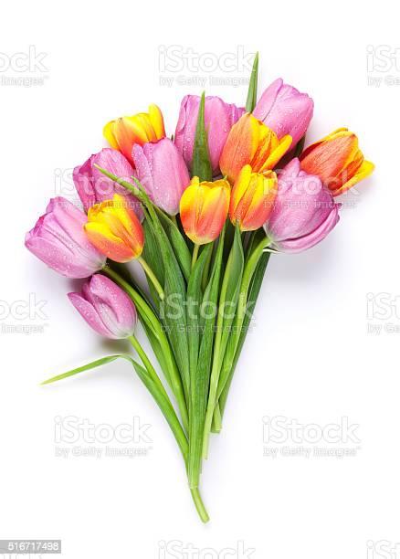 Fresh colorful tulip flowers bouquet picture id516717498?b=1&k=6&m=516717498&s=612x612&h=uqoqu2vqapamjonqeunoohtt0n4ipziaq6 wrkwmjys=