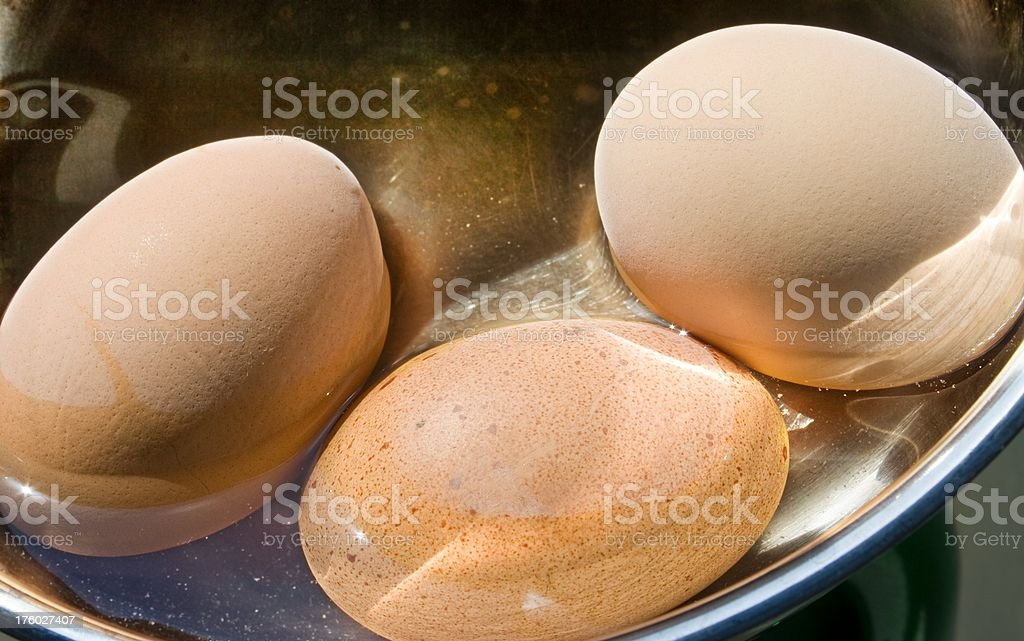 fresh cooked eggs in a pot stock photo