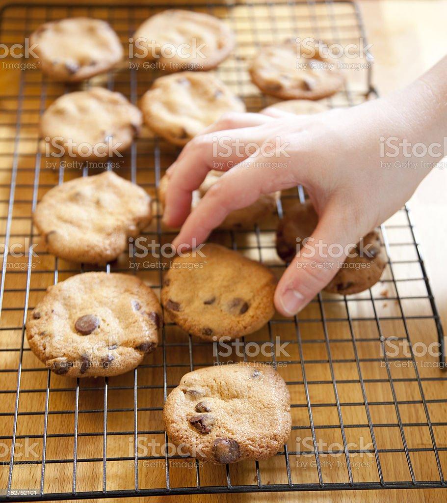 Fresh Cookies royalty-free stock photo