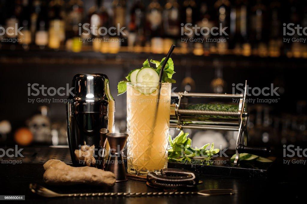 Frische, kühle und saure Sommer-cocktail mit Ingwer, Gurke und Minze – Foto