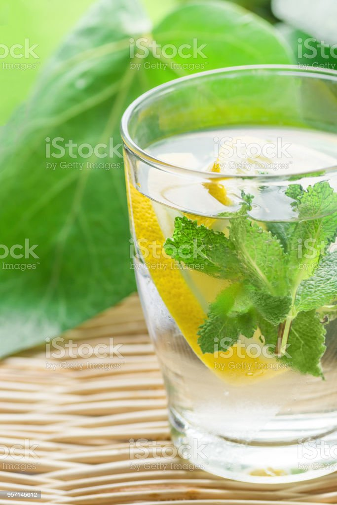 Fresh Cool Infused Detox Water with Ripe Organic Sliced Lemons Mint in Frosty Glass on Wicker Table. Tropical Plants Background. Healthy Drink Detox Summer Refreshment. Copy Space stock photo