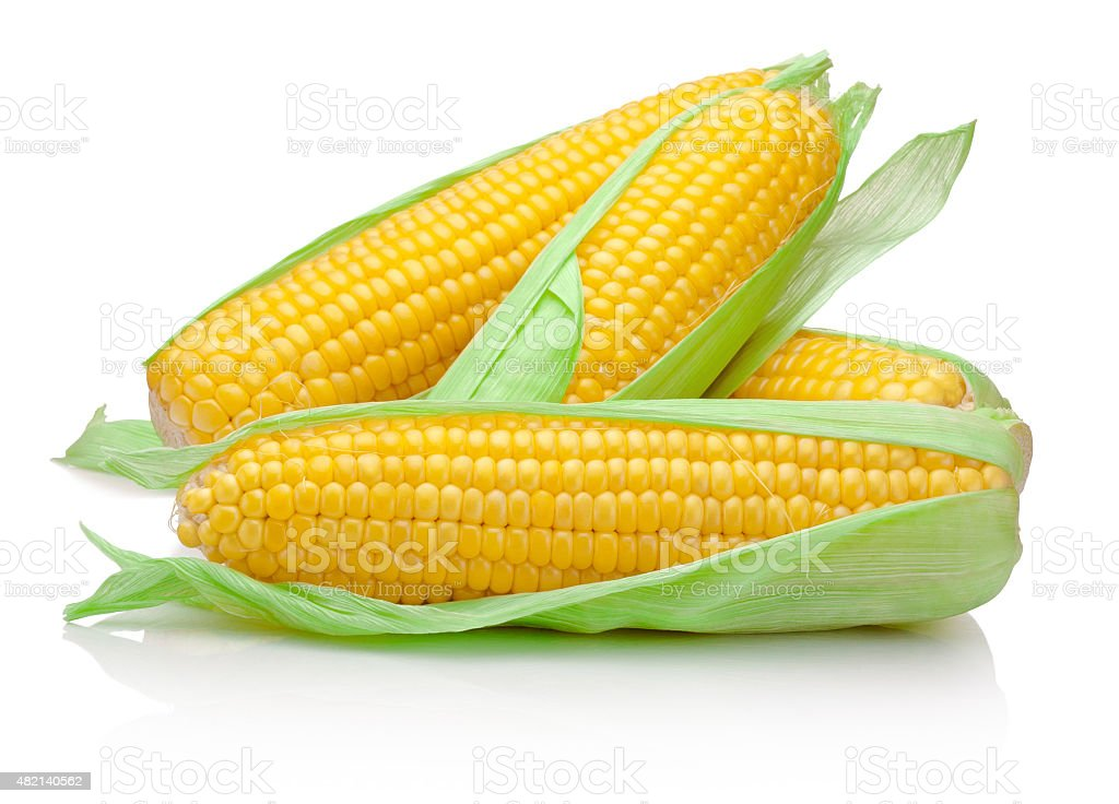 Fresh corn cob isolated on white background stock photo