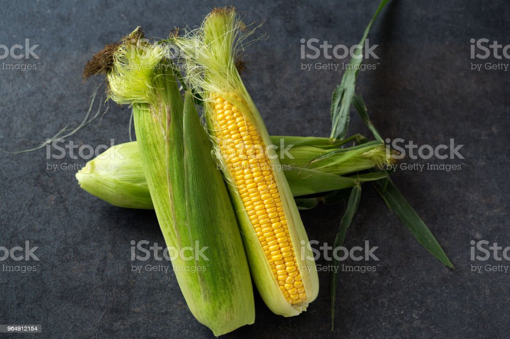 Fresh corn on cobs on rustic black table - Royalty-free Agriculture Stock Photo