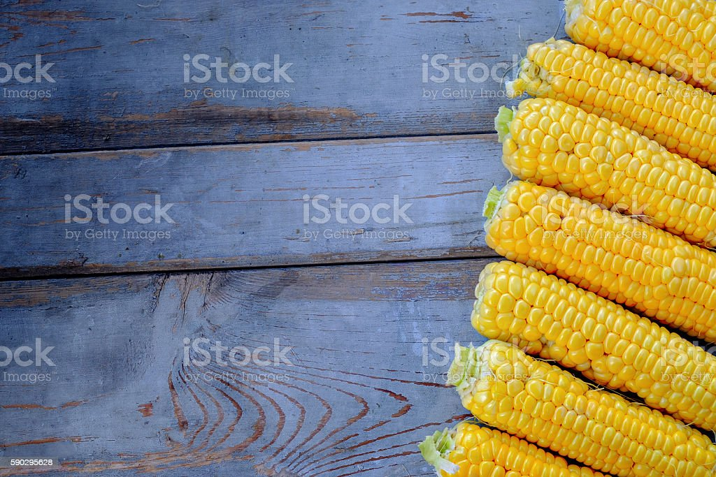 Fresh corn on cobs on rustic wooden table royaltyfri bildbanksbilder