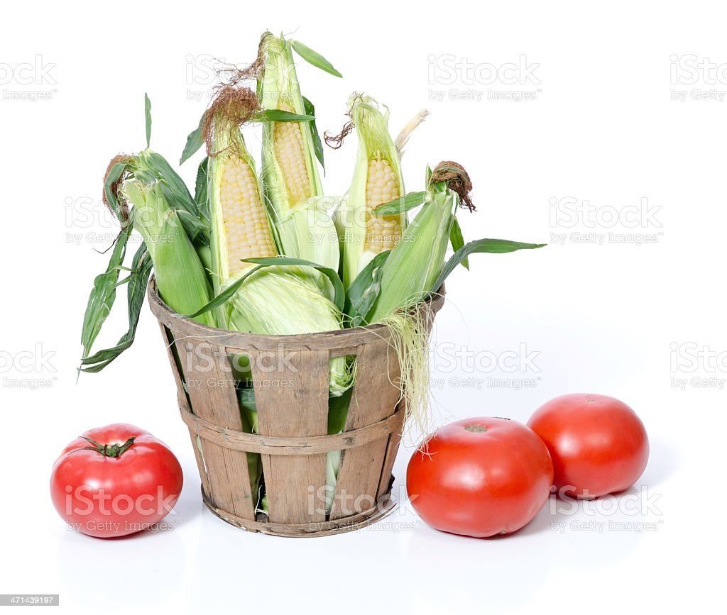 Fresh Corn on the Cob and Tomatoes stock photo