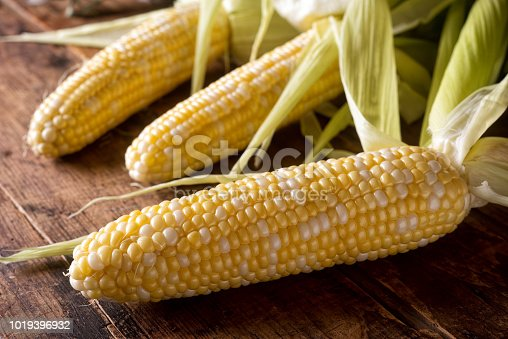 Freshly picked corn on the cob on a rustic wooden harvest table.