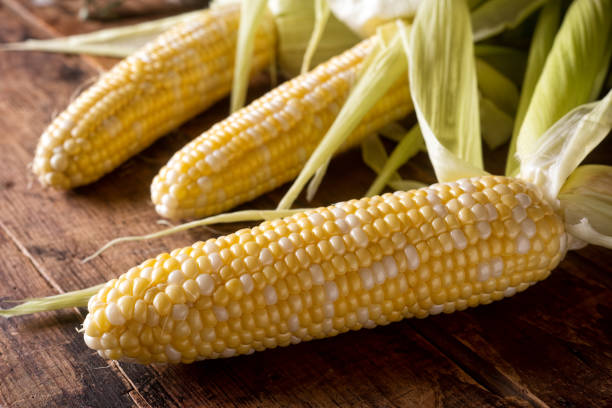 Fresh Corn on the Cob Freshly picked corn on the cob on a rustic wooden harvest table. sweetcorn stock pictures, royalty-free photos & images