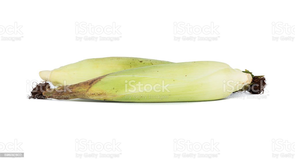 Fresh corn royalty-free stock photo