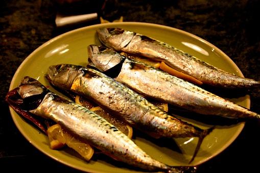Fresh Cornish mackerel prepared for the Barbecue