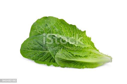 fresh cos lettuce leaf isolated on white background