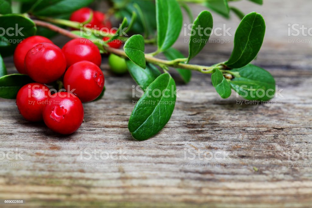 Fresh Cowberries with some leaves on wooden background stock photo