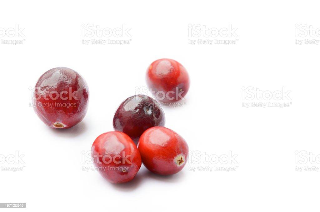 Fresh Cranberries on white background stock photo