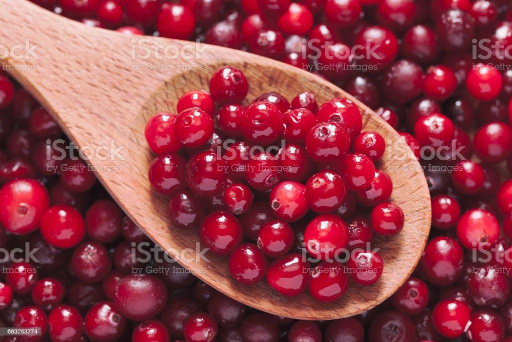 Fresh cranberry in a wooden spoon Lizenzfreies stock-foto