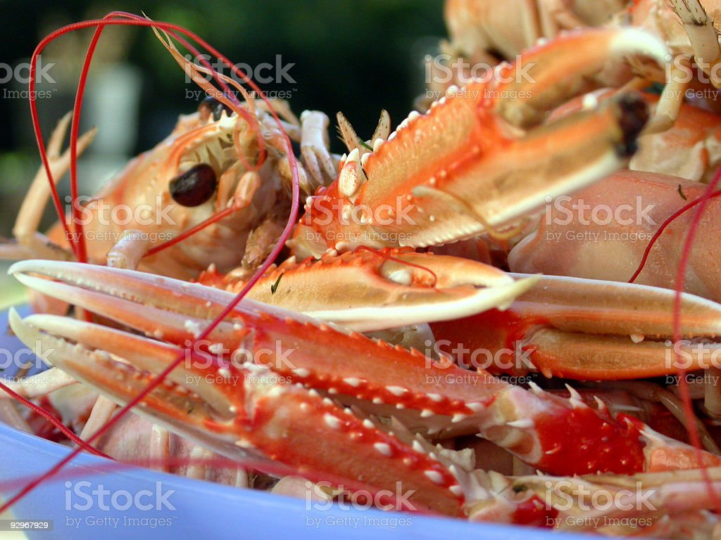 Fresh Crayfish stock photo