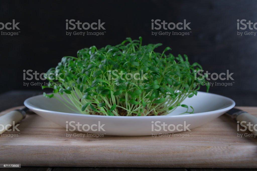 Agrião fresco brotando prontos para salada. Comida vegetariana saudável. - foto de acervo