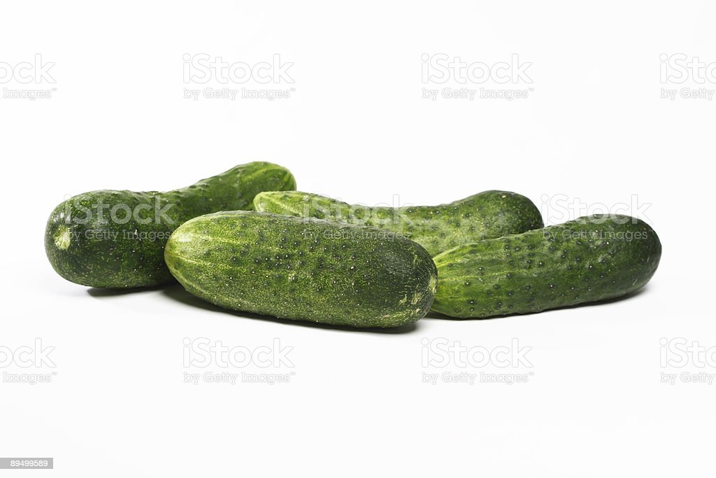 Fresh cucumbers royalty free stockfoto