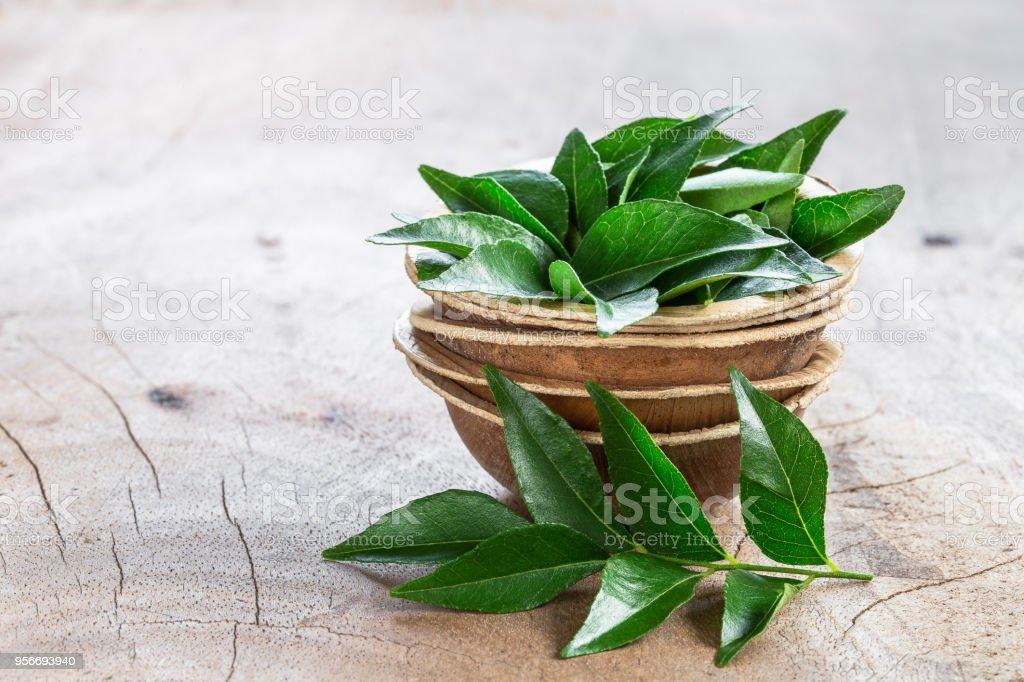 Folhas de curry fresco em tigela de coco em fundo de madeira - Foto de stock de Alimentação Saudável royalty-free