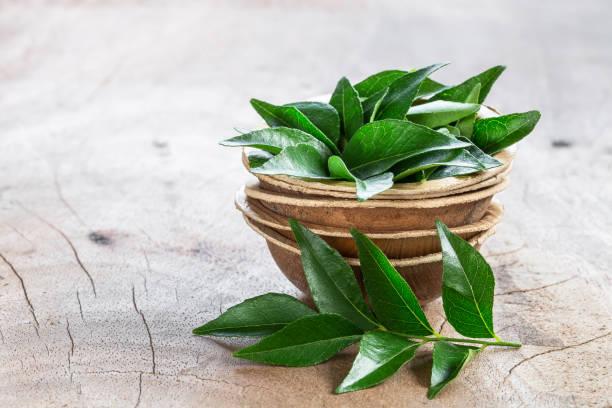 folhas de curry fresco em tigela de coco em fundo de madeira - caril - fotografias e filmes do acervo