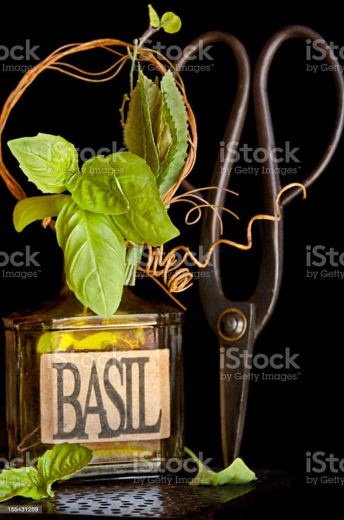 Fresh cut Basil royalty-free stock photo