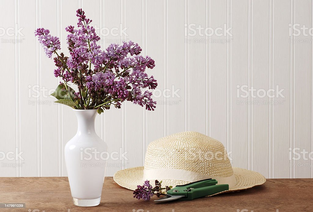 Fresh cut lilac flowers royalty-free stock photo
