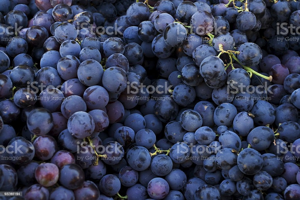 Fresh dark red grapes at market place stock photo