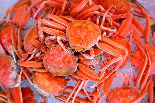 fresh delicious Japanese snow crab at Kinosaki onsen Japan