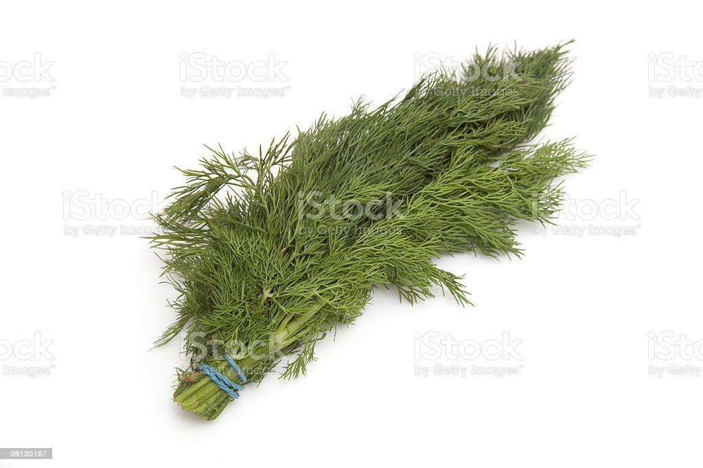 Fresh dill herb isolated on a white background. royalty-free stock photo