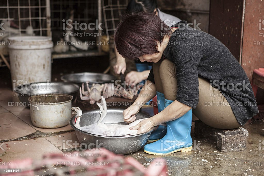 Fresh duck meat gets prepared in China stock photo