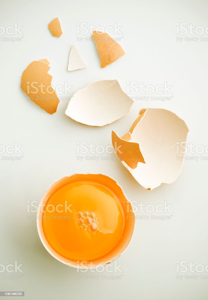 Fresh egg stock photo