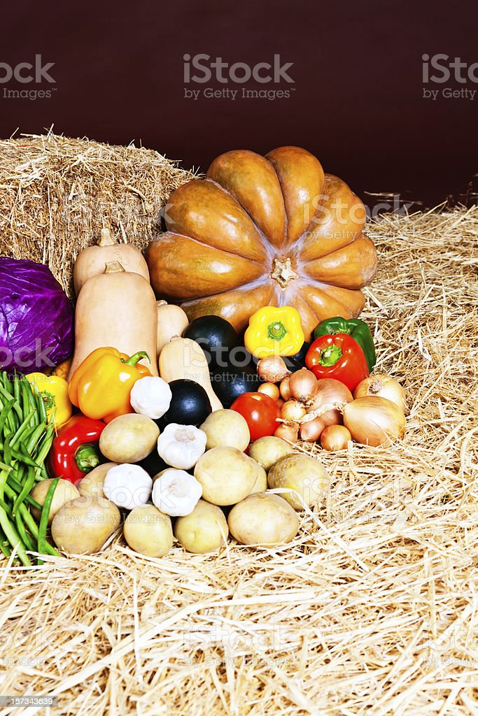 Fresh fall vegetables wait on straw at farmers market royalty-free stock photo