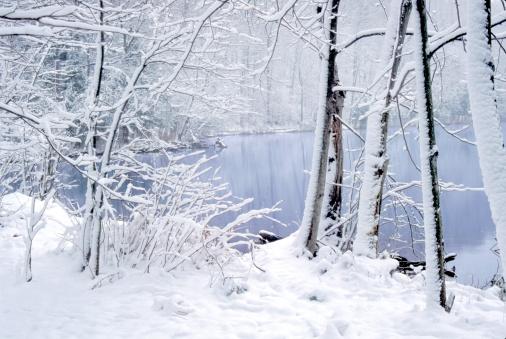 Fresh fallen snow at Green Lakes State Park, NY