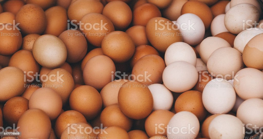 Fresh farm eggs stock photo