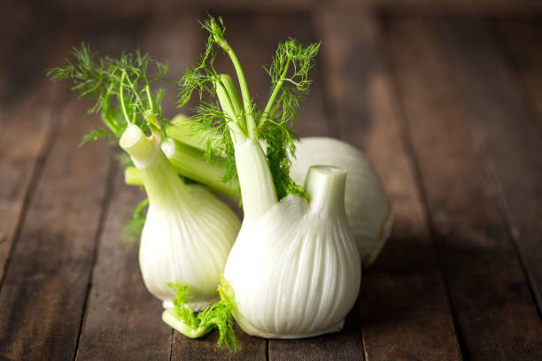 Fresh fennel bulb Fresh fennel bulb fennel stock pictures, royalty-free photos & images