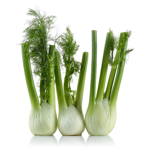 Fresh Fennel Fresh fennel over white background. fennel stock pictures, royalty-free photos & images