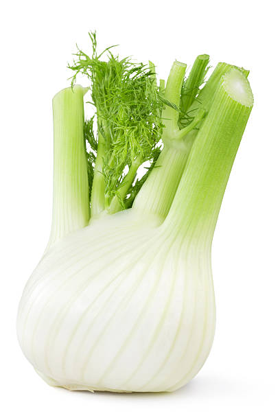 fresh fennel close up of fresh fennel isolated on white background fennel stock pictures, royalty-free photos & images