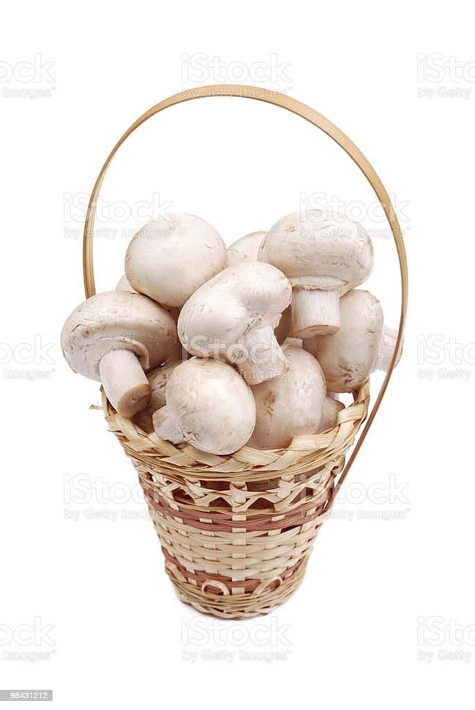 Fresh field mushrooms in a basket royalty-free stock photo
