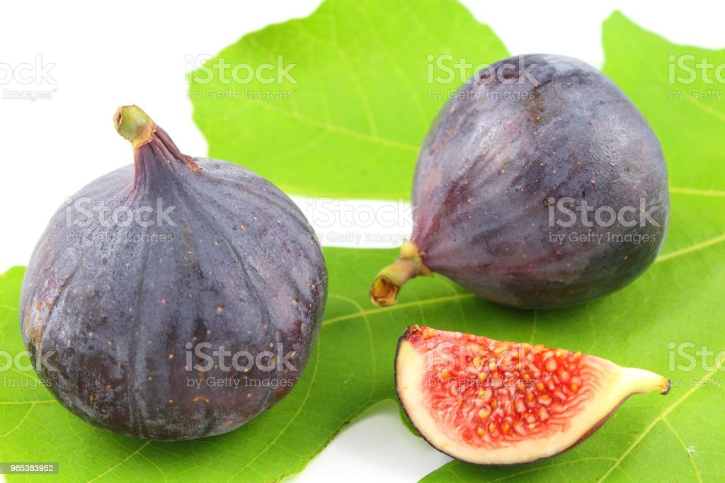 fresh fig fruits on a fig leaf zbiór zdjęć royalty-free