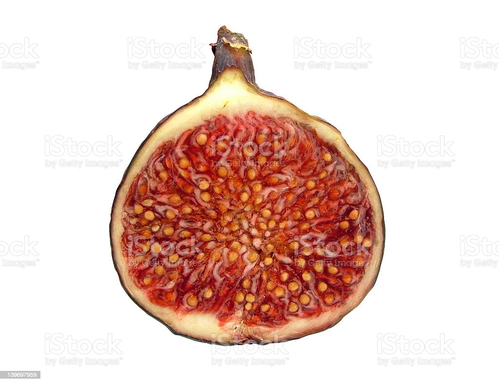 Fresh Fig royalty-free stock photo